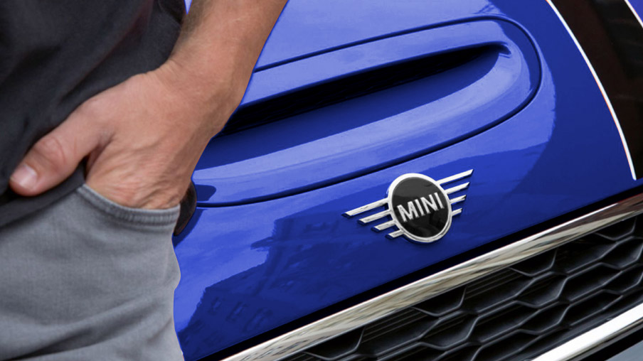 THE MINI LOGO